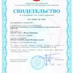 ipm_101msv-vo